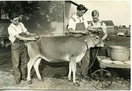4-H Dairy 1928